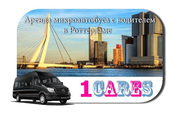 Аренда микроавтобуса с водителем в Роттердаме